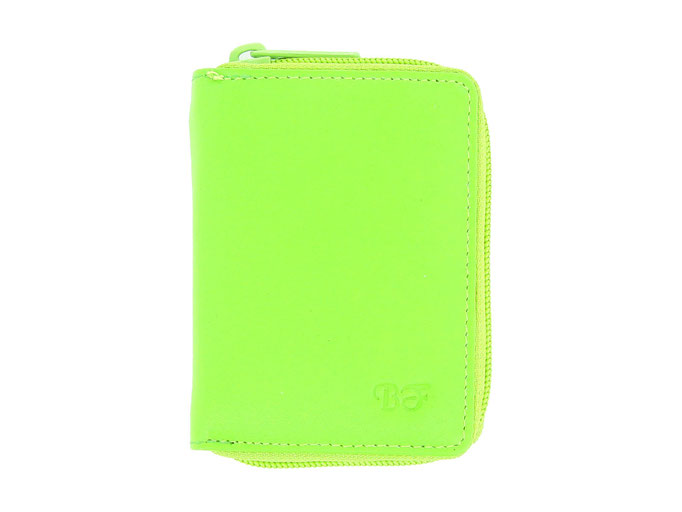 Kreditkartenetui mit Reisverschluss - Apfelgrün