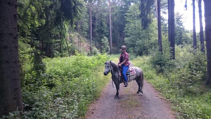 Ausritt mit Benny im Tharandter Wald