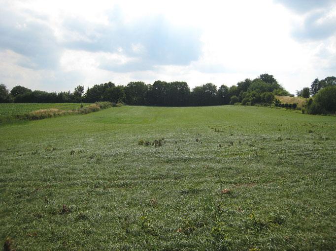 Baufeld 2009