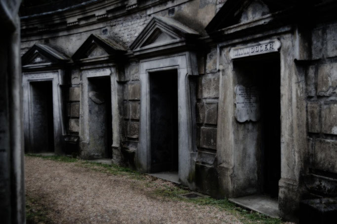 Peter: Highgate Cemetery I