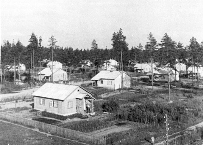 Finnenhaussiedlung