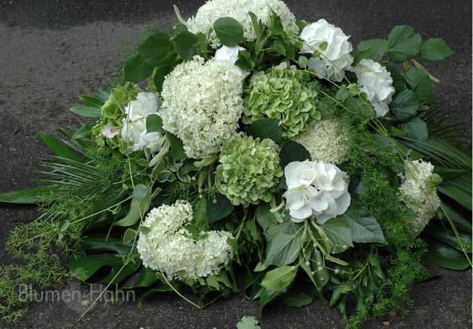 Hortensien in weiß/grün Tönen