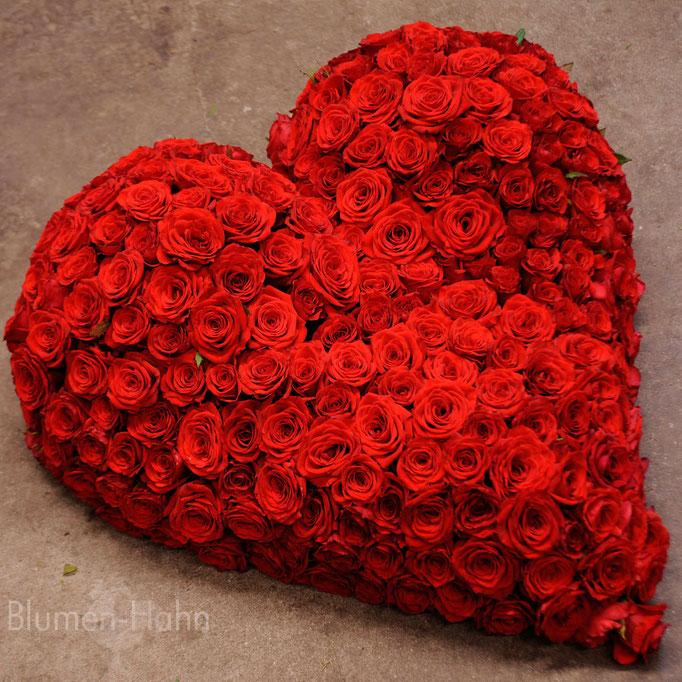 rote Rosen pur