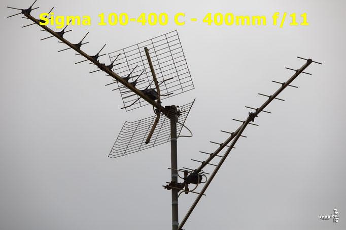 Test Sigma C 100-400 mm f/5-6.3 DG OS HSM - www.beanico-photo.fr