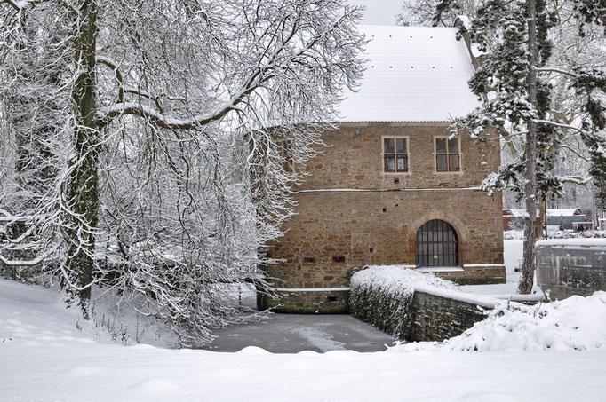 Botanischer Garten Rombergpark, Dortmund - Torhaus