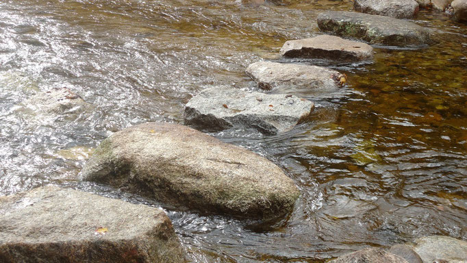After two days of heavy rain and rising water, the stepping stones still function well