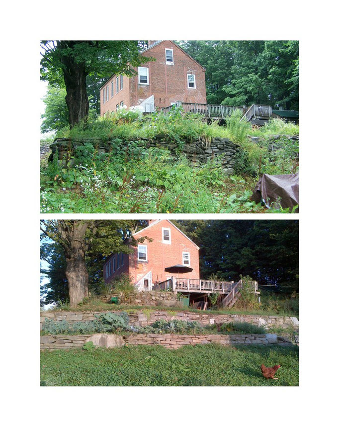 The terraced garden: before and after