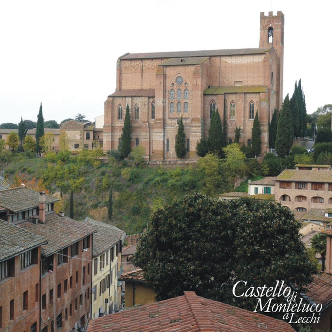 Panorama di Siena • Landscape of Siena