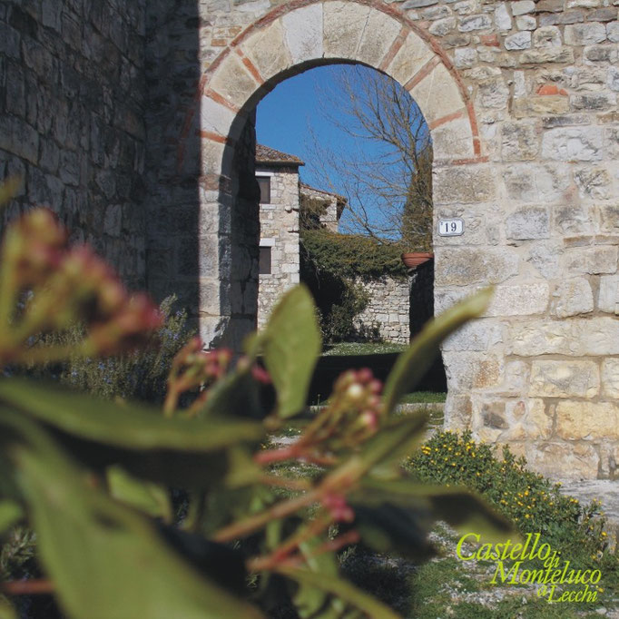 L'arco di accesso al castello nel sole di primavera • The entrance arch to the castle in the spring sunshine