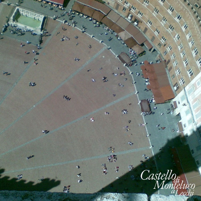 Piazza del Campo dal campanile • «Campo» square view from the bell tower