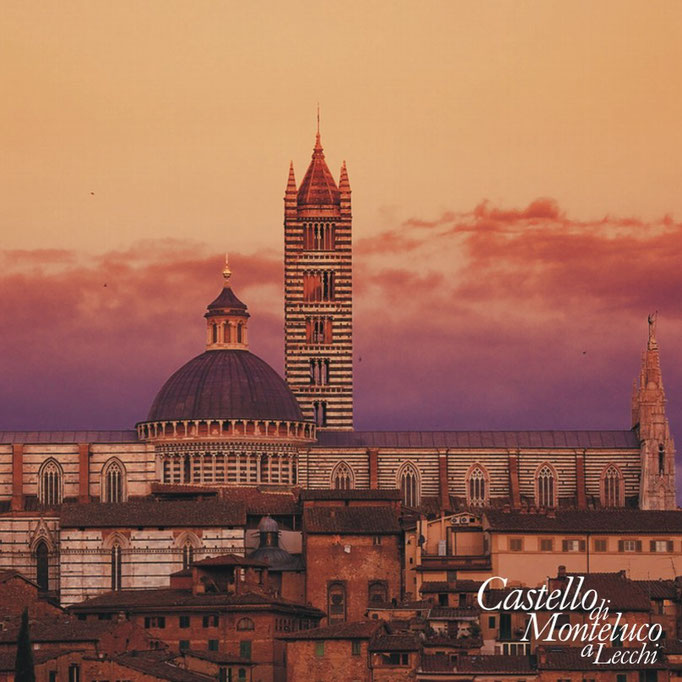 Il Duomo al tramonto • The Cathedral at sunset
