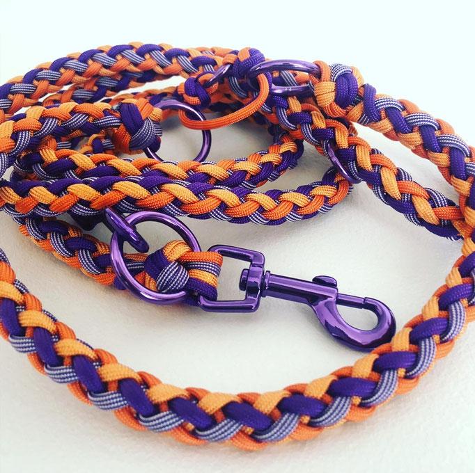 Gaucho (Halsband & Leine)