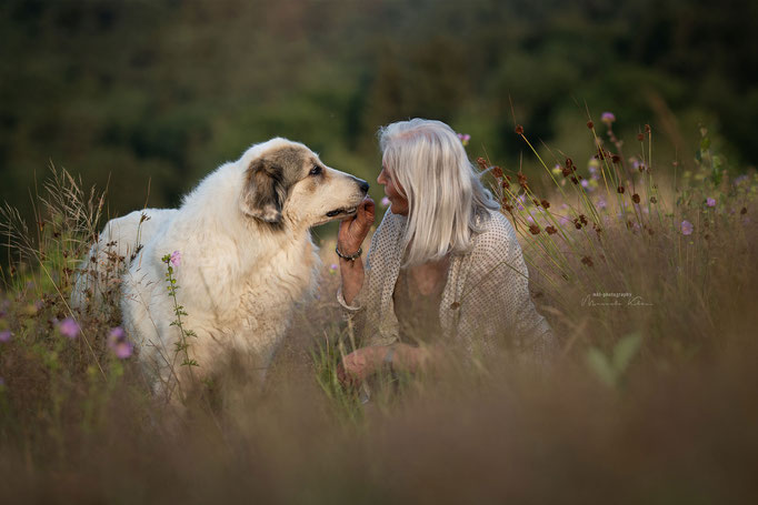 Herzmoment mit altem Hund und seiner Besitzerin
