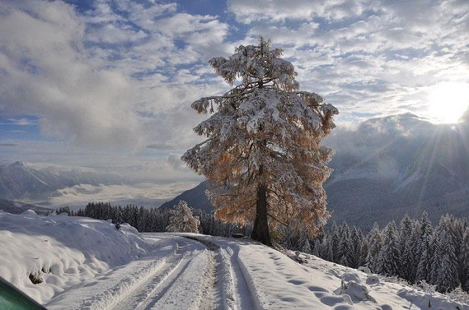 Genießen, entspannen und erholen: Nassfeld in Kärnten