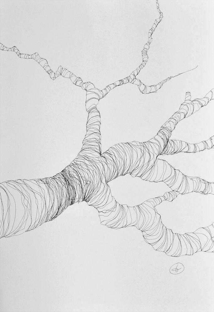 Arbor 2. Encre sur papier lisse Clairefontaine 250g
