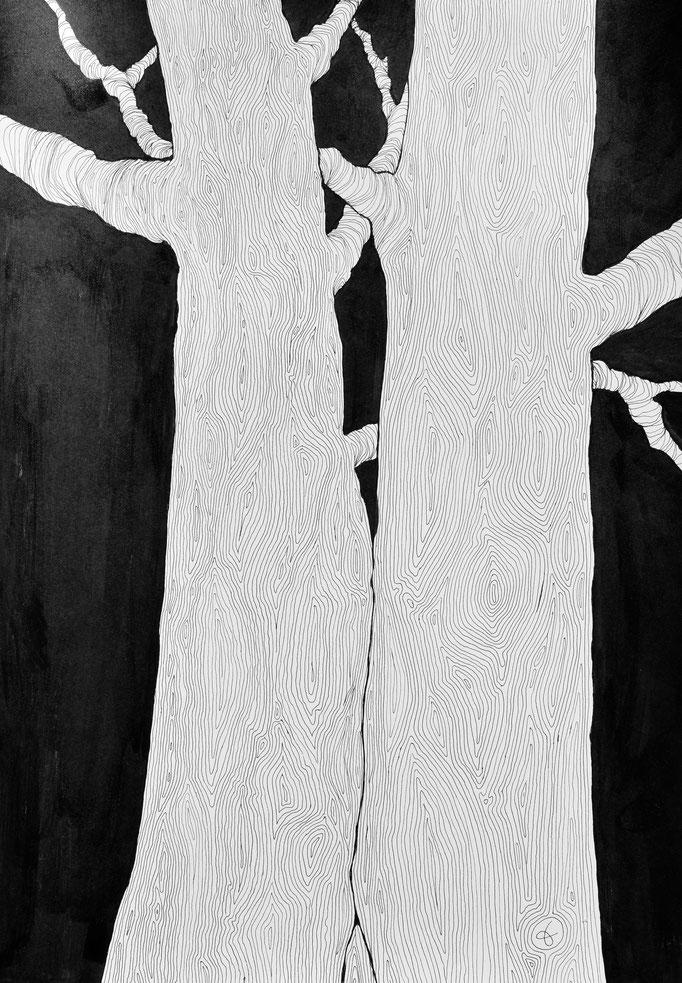 Arbor 4. Encre sur papier lisse Clairefontaine 250g