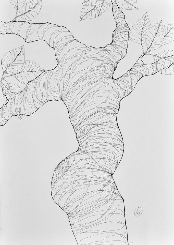 Arbor 3. Encre sur papier lisse Clairefontaine 250g