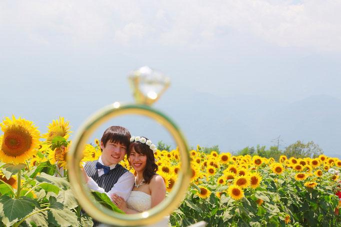 リング越しの新郎新婦様、ひまわり畑で結婚写真を撮る