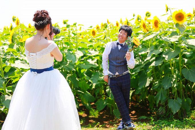 山梨明野ひまわりフェスティバルひまわりウェディング ひまわりフォトウェディング ひまわり結婚写真 ひまわり結婚式前撮り 明野ひまわりロケ フォトウェディング 結婚写真 前撮り 夕日を浴びて ひまわり畑 ひまわりフォトウェディング結婚写真 ひまわり前撮り 和装前撮り ひまわり結婚式 ひまわりウェディング写真撮影