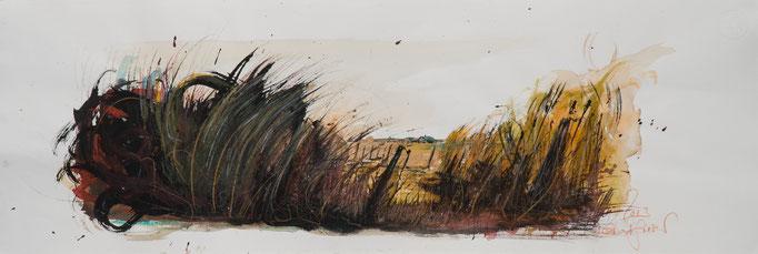 Gras, 2014, 79x26,5, Aquarell/Bütten, N19                       ©Raimund Egbert-Giesen