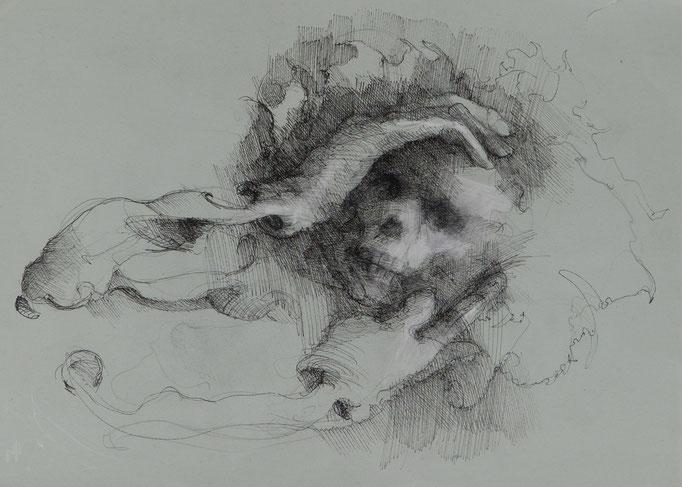 Todesscham, 2018, 34,5x24,5, Fineliner/Papier, A26                            ©Raimund Egbert-Giesen