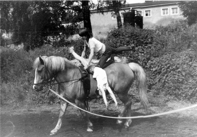 Wünschendorf Erzgebirge Pferdesportverein