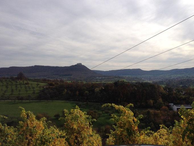 Blick von Linsenhofen übers Tal