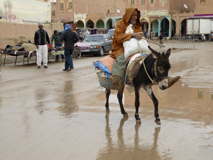 Bild: Marokkaner auf Esel