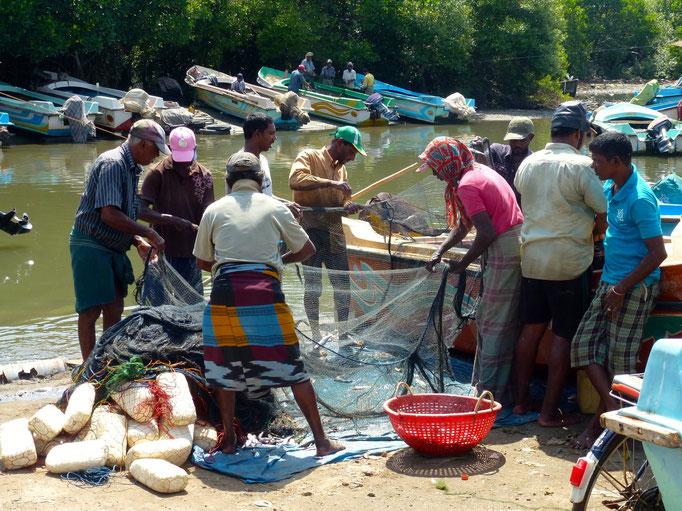 Bild: Fischer bei der Arbeit