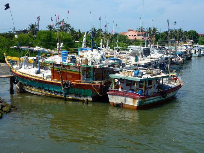 Bild: Fischerboote im Hafen