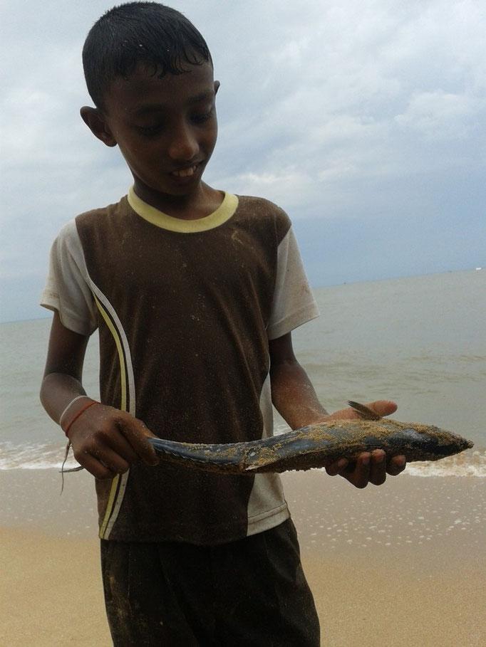 Ein gefangener Fisch