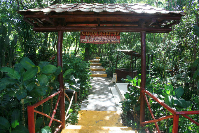 Saturno Höhle Kuba