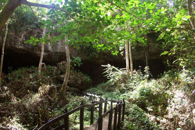 Nature in Saturno Cave