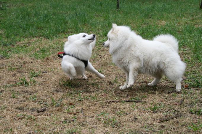 Lexi und Eiko geben Vollgas