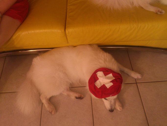 Fussball EM, als die Schweiz noch dabei war