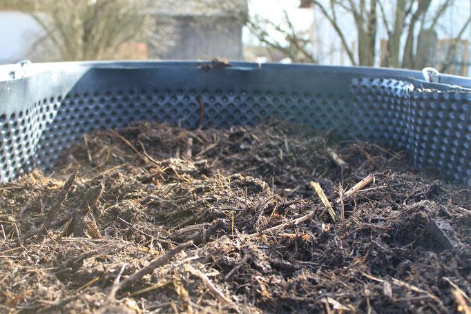 Hochbeet-Befüllung, Hochbeet-Schicht, Rohkompost, Kompost, Mist