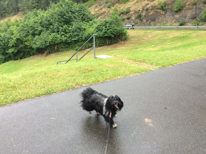 Am Anfang hat es noch geregnet, aber das macht uns nix.