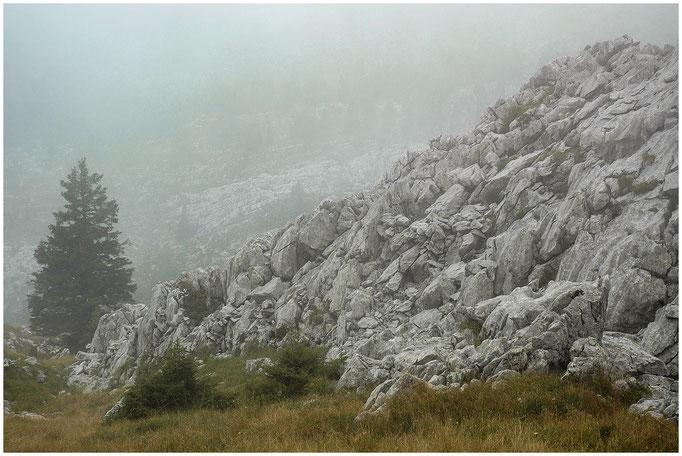 Kemmeriboden-Flühli - Furggengütsch - Ostgrat - Hohganthütte (SAC Emmental) - 13.09.2009