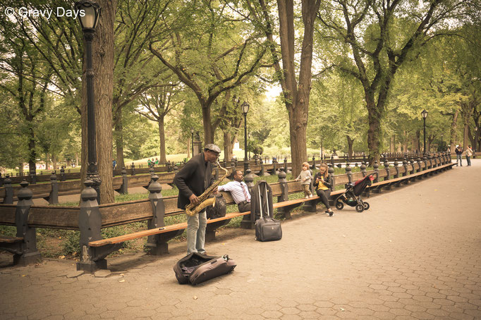 Street Musician, New York Central Park, 2018