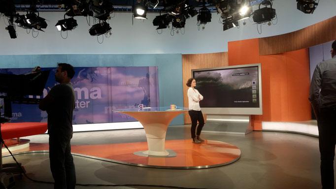 Florian Faab, ZDF MoMa