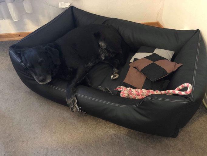 Knuffelwuff Hundebett Sidney in schwarz 120 x 85 cm