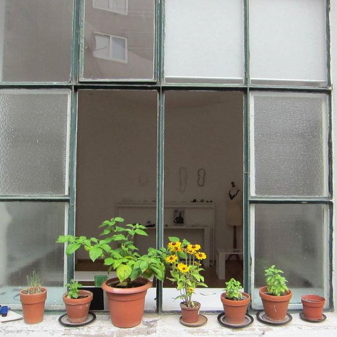 Blick von außen in den Showroom