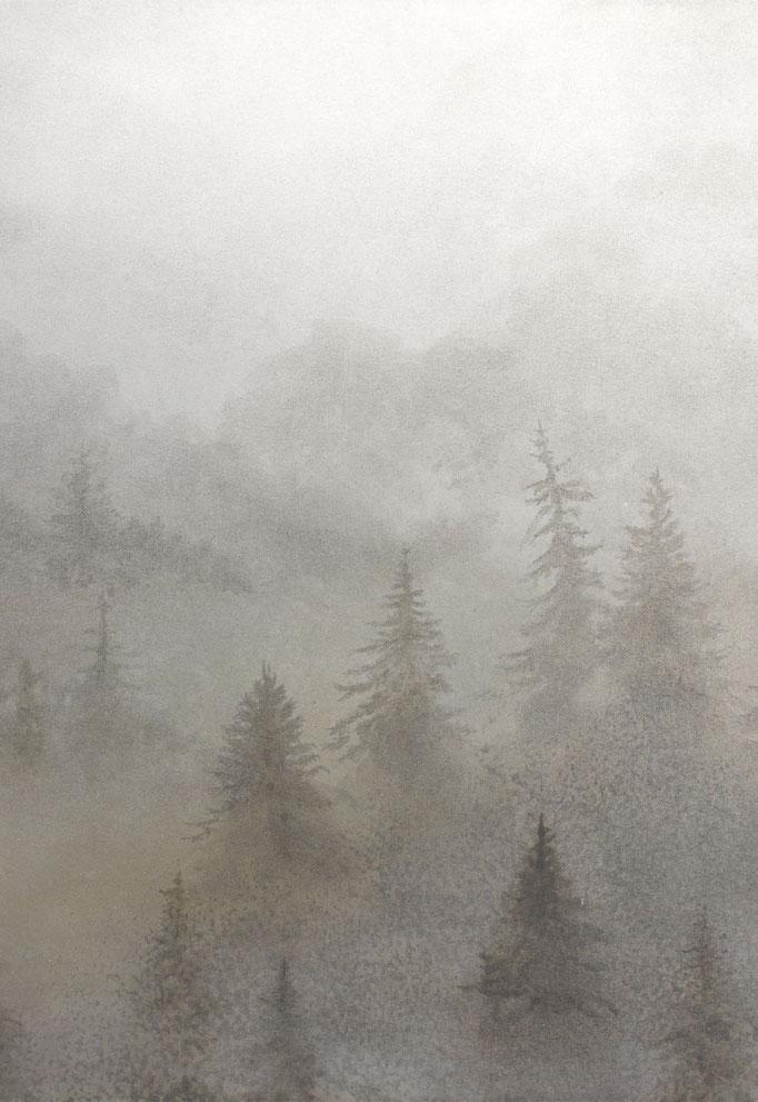 ポストカード-1 霧の森  ¥330 - (税込)     H148×W100 mm