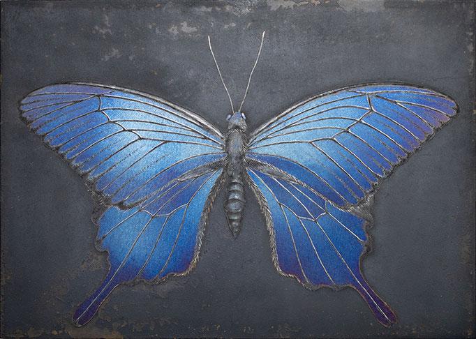 碧の蝶     H91×W128 mm