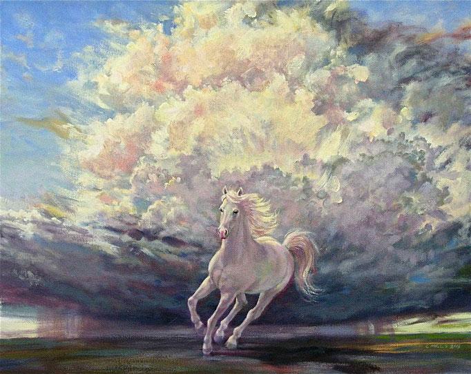 """2013-4 ; White Horse - Oil - 24""""x30"""""""