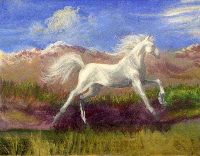 """2013 ; White Horse - Oil - 24""""x30"""""""