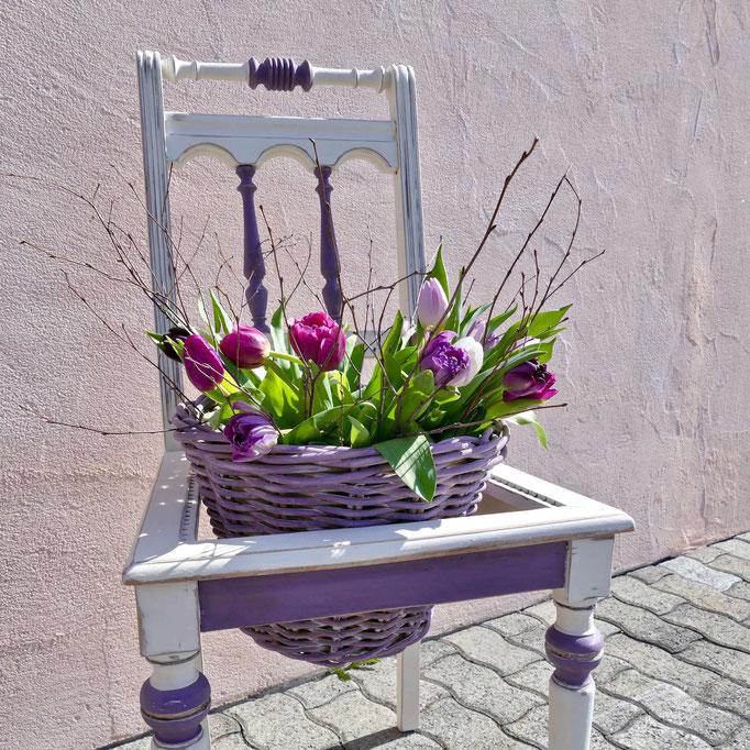 alter neu gestrichener Stuhl ohne Polster gefüllt mit einem Korb bunter Tulpen als Gartendeko