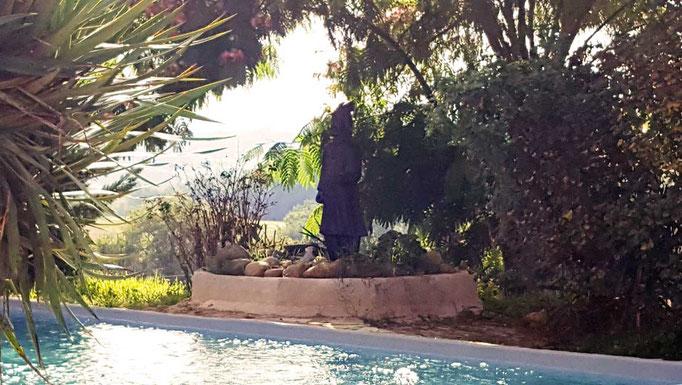 Gîte-Appart piscine privée partagée (10-5 m)