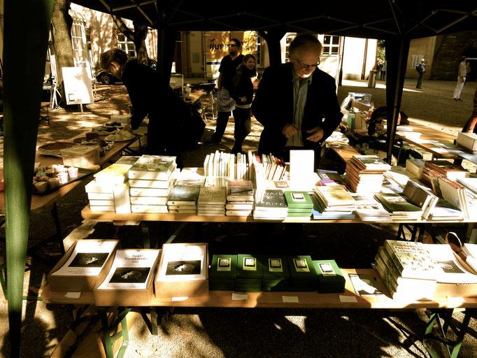 Büchertisch mit Poesiebündel, -kalender und vielen schönen Gedichtbänden (Einzelpublikationen der Auftretenden und Anthologien)