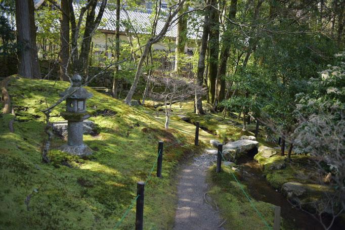 旧竹林院 小道